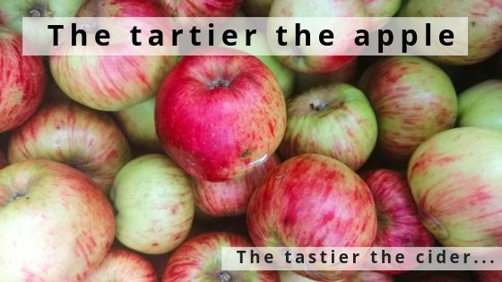 The Tartier The Apple, The Tastier The Cider…